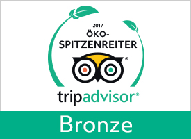 GreenLeader Bronze  - Bronze level